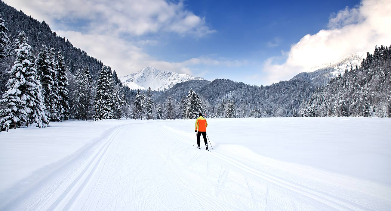Cross-country skiing trail between snowy trees with a cross-country skier in the middle